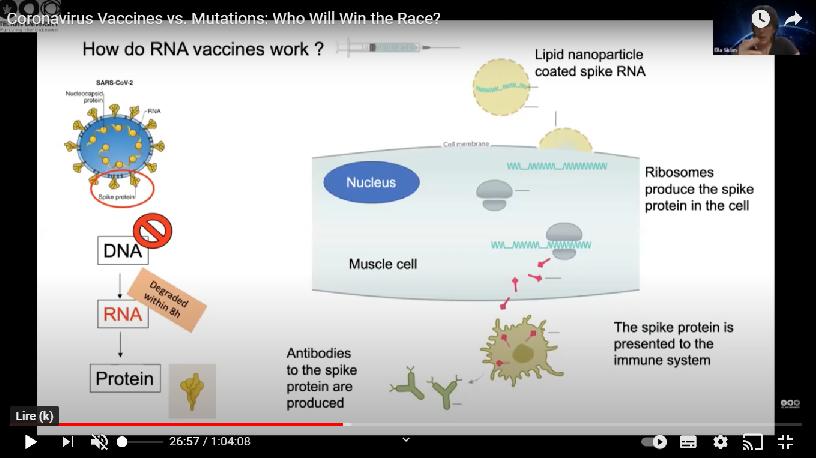 Vaccin RNA