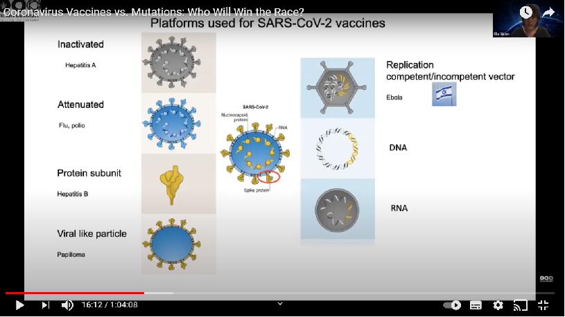 strategies vaccinales